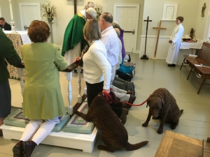 15-10-04 Blessing of Animals19
