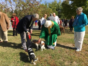 15-10-04 Blessing of Animals32